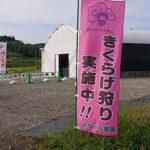 ともちゃん農園